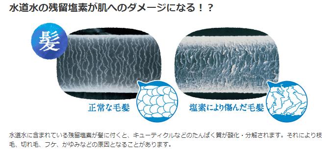 残留塩素が髪の毛に与える影響
