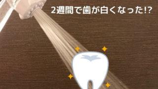 ミラブルは歯が白くなる