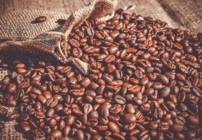猫除けコーヒー豆をまく