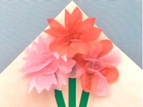 花びらの形や色で雰囲気の違う花になる