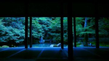 蓮華寺の書院から見た庭園