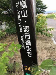 流れ橋から嵐山への標識