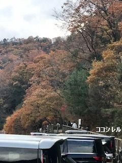 ほしだ園地の駐車場からの紅葉