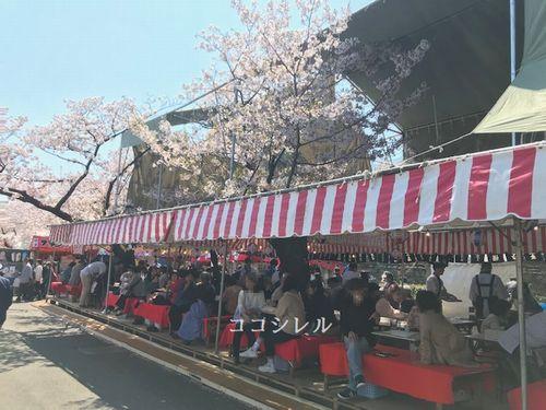 桜の通り抜けの居酒屋屋台