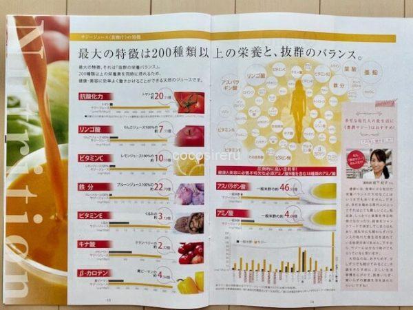 豊潤サジー栄養素